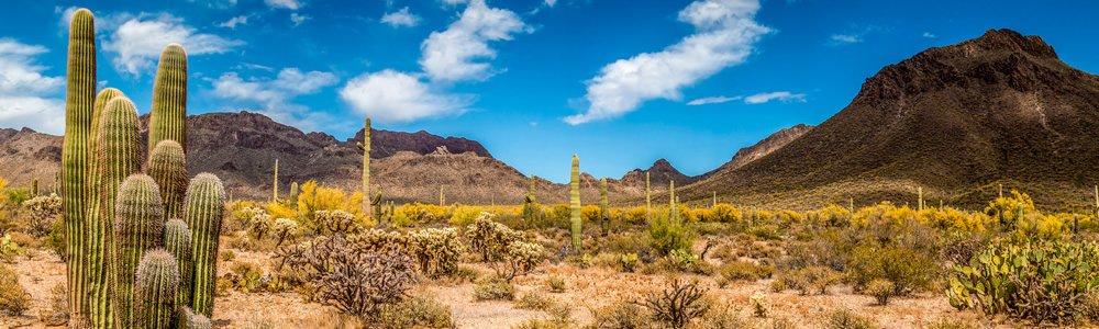 Arizona Quonset Hut